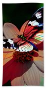Butterfly Dont Fly Away Beach Towel