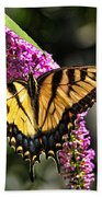 Butterfly - Eastern Tiger Swallowtail Beach Towel