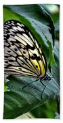 Butterfly - Green Leaf Beach Towel