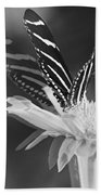 Butterfly In Motion #1952bw Beach Towel