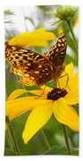 Butterfly On Blackeyed Susan Beach Towel