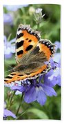 Butterfly On Blue Flower Beach Sheet
