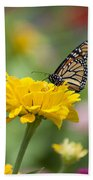 Butterfly On Carnation Beach Towel