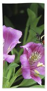 Butterfly On Pink Lillies Beach Towel
