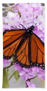 Butterfly On Pink Phlox Beach Towel