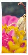 Butterfly On Zinnia Beach Towel