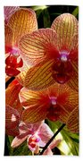 Butterfly Orchids Beach Towel