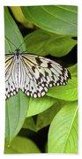 Butterfly Perching On Leaf In A Garden Beach Towel