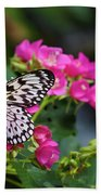 Butterfly Pollinating Flower Beach Towel
