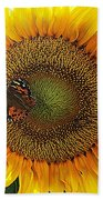 Butterfly Sunflower Beach Towel