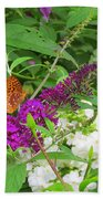 Butterfly Surprise Beach Towel
