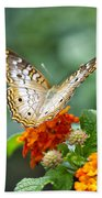 Butterfly Wings Of Sun 2 Beach Towel by Thomas Woolworth