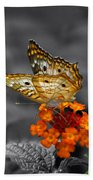 Butterfly Wings Of Sun Light Selective Coloring Black And White Digital Art Beach Towel