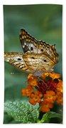 Butterfly Wings Of Sun Light Beach Towel