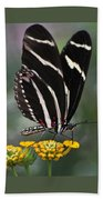 Butterly Beach Towel