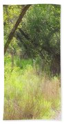 Buttonwood Forest Beach Towel
