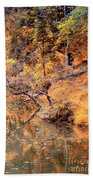 By The Bank Of The Golden Forest Beach Towel