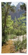 By The Emerald Pools - Zion Np Beach Towel