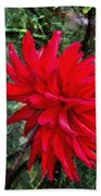 By The Garden Gate - Red Dahlia Beach Towel