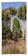 Cabbage Palm Beach Towel