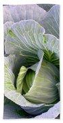 Cabbage Still Life Beach Towel