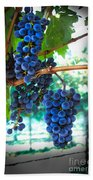 Cabernet Sauvignon Grapes Beach Towel by Robert Bales