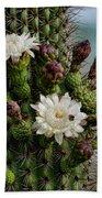 Cacti Bouquet  Beach Towel