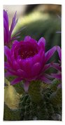Cacti Flower Bouquet  Beach Towel