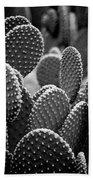 Cactus 5252 Beach Towel