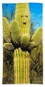 Cactus Face Beach Towel