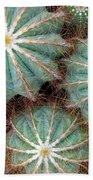 Cactus Family 2 Beach Towel