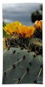 Cactus Flower Beach Sheet