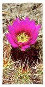 Cactus Flower Palm Springs Beach Towel
