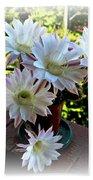 Cactus Flower Perfection Beach Towel