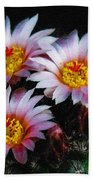 Cactus Flowers With Texture Beach Towel