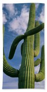 Cactus In The Clouds Beach Towel