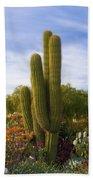 Cactus Monterey California Beach Towel