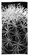 Cactus Thorn Pattern Beach Towel