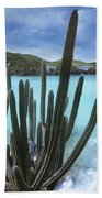 Cactus Trunk Bay  Virgin Islands Beach Towel
