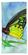 Cairns Birdwing Beach Towel