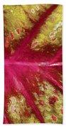 Caladium Leaf Beach Towel