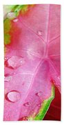 Caladium Leaf Beach Towel