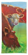 Calf And Cows Painting Beach Towel