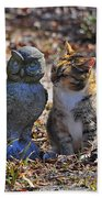 Calico Cat And Obtuse Owl Beach Towel by Al Powell Photography USA
