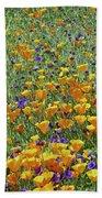 California Poppies And Desert Blubells Beach Towel