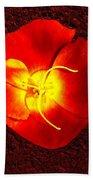 California Poppy By Nadine Johnston Beach Towel