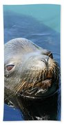 California Sea Life Beach Towel