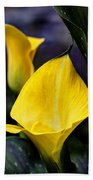 Calla Lily Portrait In Yellow And Green Beach Towel