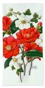 Camellia Adolf Audusson Beach Towel