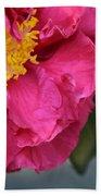 Camellia With Bee Beach Towel